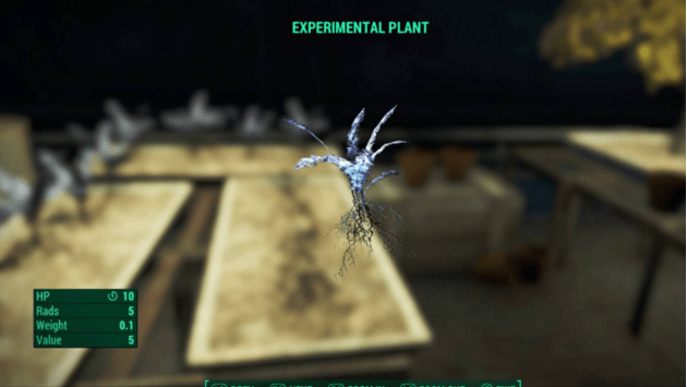 Fallout 4 'nirnroot'