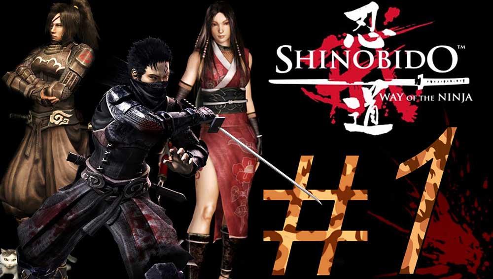 shinobido best ninja
